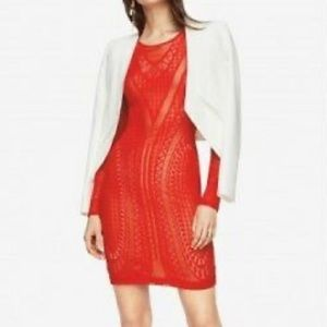 NWT BCBGMAXAZRIA red lace dress with underlay